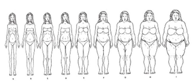 Image for Pulvers African American Female Scale. Adapted from Pulvers, K. M., Lee, R. E., Kaur, H., Mayo, M. S., Fitzgibbon, M. L., Jeffries, S. K., Butler, J., Hou, Q., & Ahluwalia, J. S. (2004).Obesity Research, 12, 1641-1651.