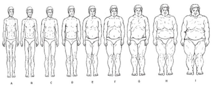 Image for Pulvers Adult African American Male Scale. Adapted from Pulvers, K. M., Lee, R. E., Kaur, H., Mayo, M. S., Fitzgibbon, M. L., Jeffries, S. K., Butler, J., Hou, Q., & Ahluwalia, J. S. (2004).Obesity Research, 12, 1641-1651.